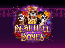 Beautiful Bones